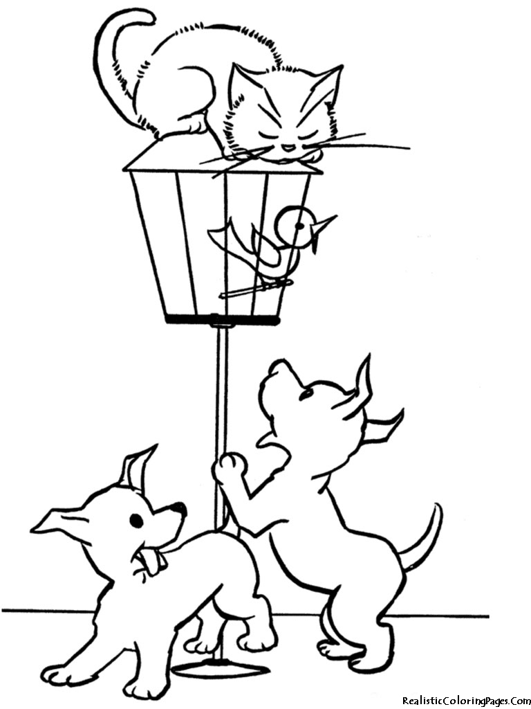 Dog And Cat Coloring Pages Coloring Pages Realistic Kitten Coloring Pages Picture Birijus Com