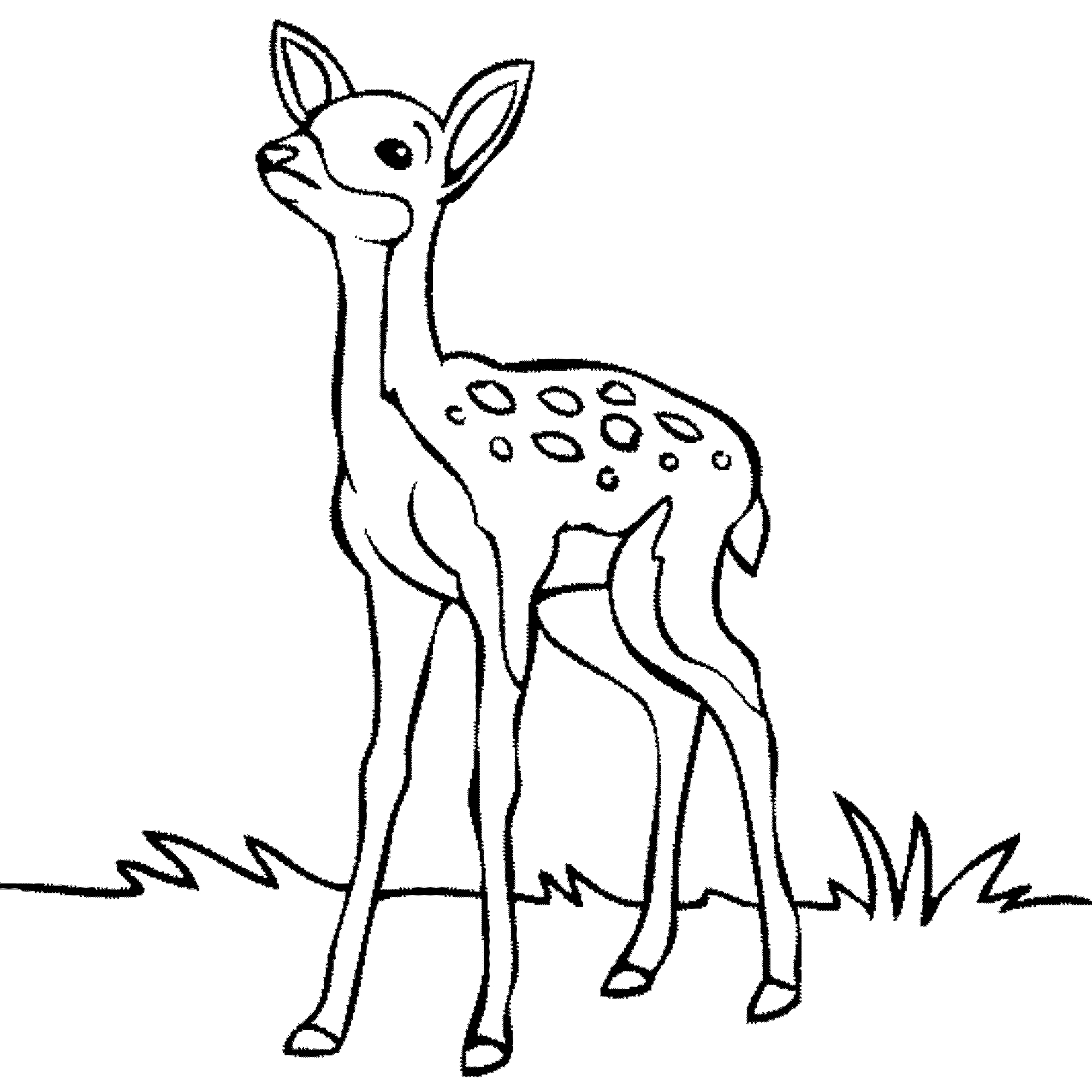 Forest Animals Coloring Pages Forest Coloring Pages For Kids