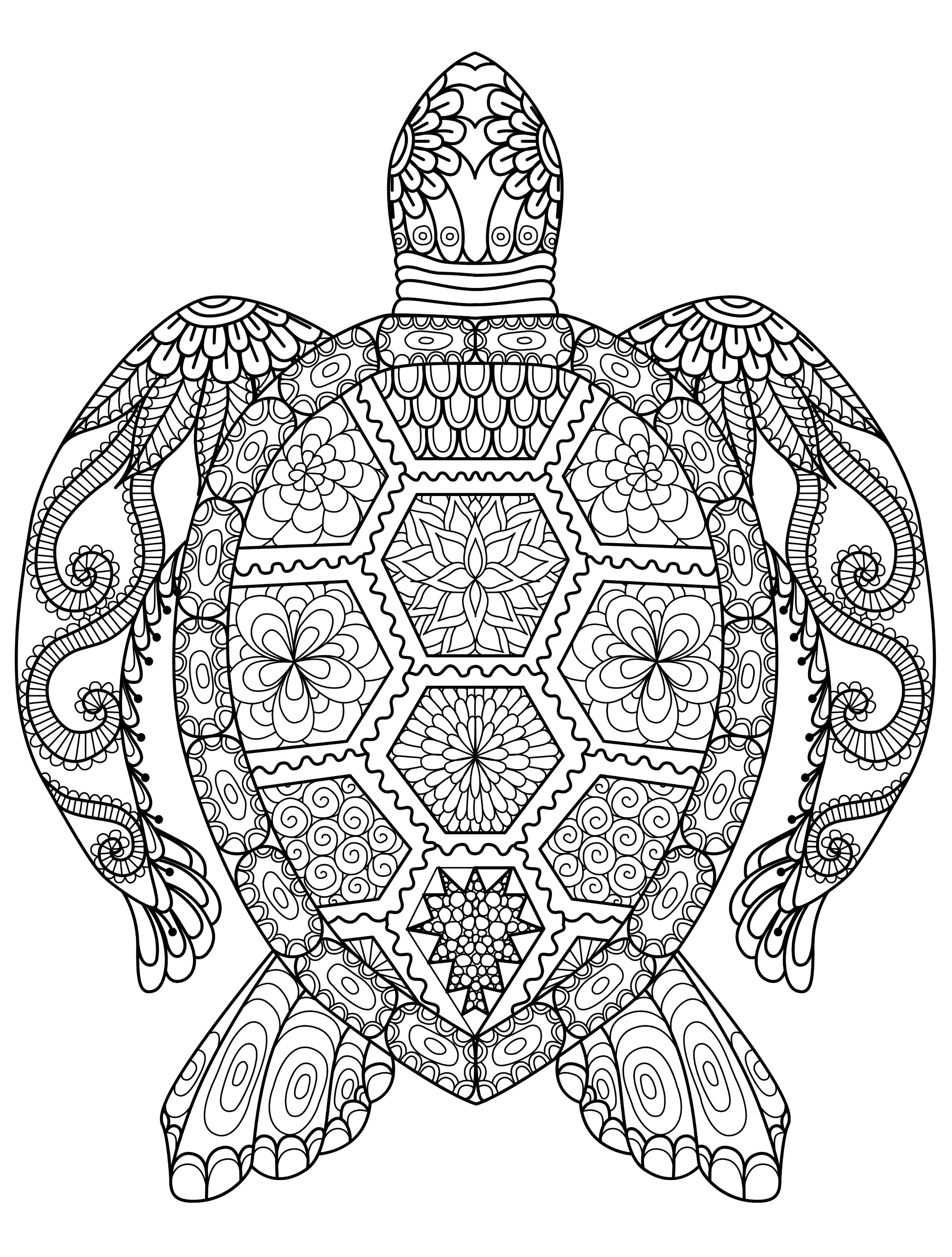 Online Coloring Pages For Adults 55 Best Animal Coloring Pages Adults  Online Coloring Pages - birijus.com