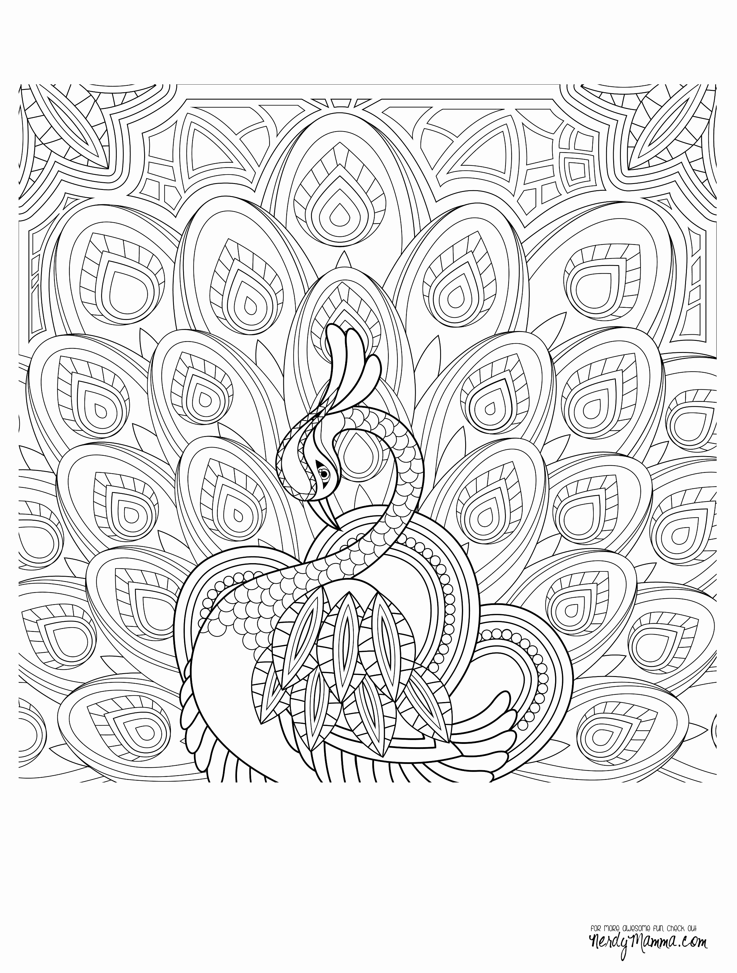 Turtles - Coloring Pages for Adults   3300x2500
