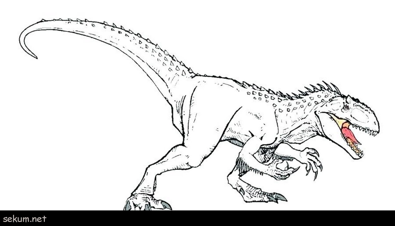 Printable dinosaur coloring pages coloring pages dinosaur dinosaur