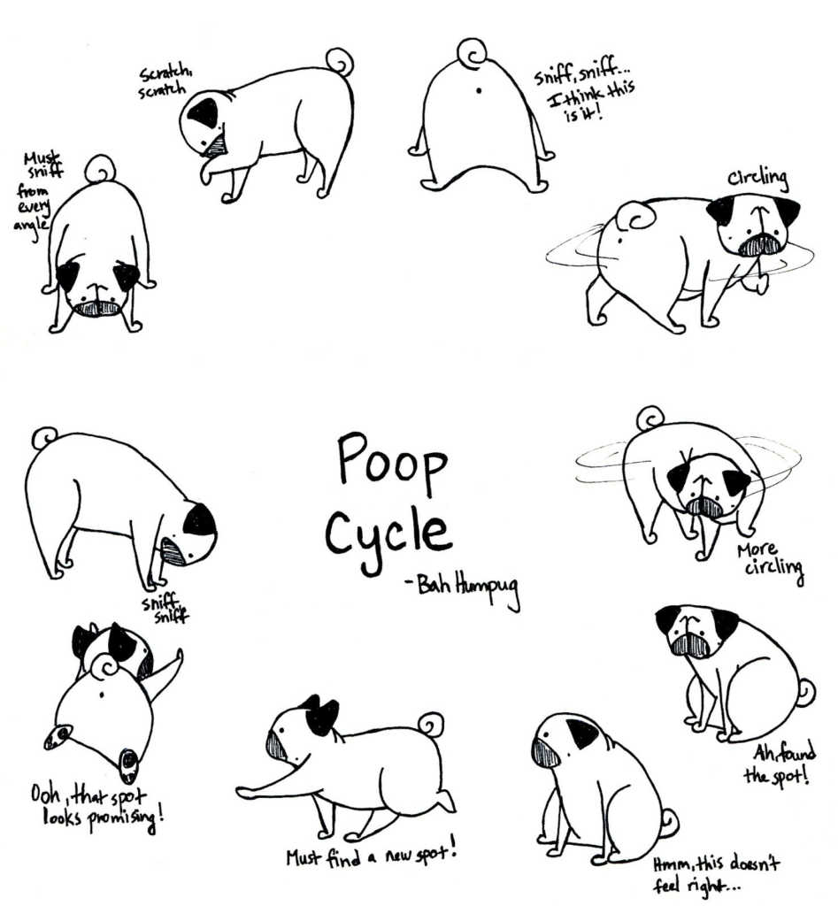 - Pug Coloring Pages Best Of Easy Cute Pug Coloring Pages Design