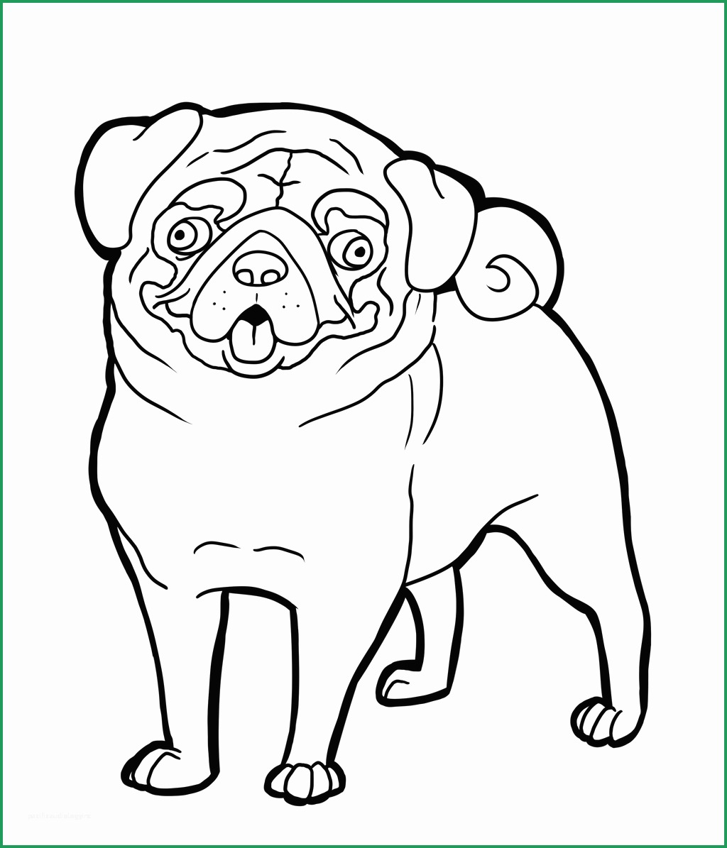 Pug Coloring Pages Free Grayscale Coloring Pages To Print Luxury Pug Coloring Pages Birijus Com